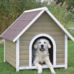 Bouwtekening hondenhok nodig? Je hond zal het waarderen!