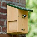 Nestkast maken voor de prachtige vogels van het voorjaar